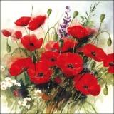Wild Poppies - Mohnblumenstrauß - Un bouquet de coquelicots