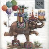 Elefantös - Jumbo birthday