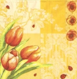 Frühlingsblüher, Marienkäfer & Schmetterlinge