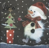 Kleiner, flauschiger Schneemann - Fluffy snowman - Petit, bonhomme de neige pelucheux