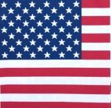 Flagge Amerika - USA flag - drapeau Amérique
