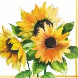 3 Sonnenblumen - Sunflowers - Tournesols