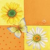 Blüten & Schmetterlinge