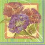 3 Hübsche Hortensien - 3 pretty hydrangeas - 3 joli hortensias