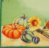 10 Kürbisse & 3 Sonnenblumen - 10 Pumpkins & 3 Sunnflowers