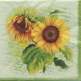 4 Sonnenblumen grün - Four sunflowers - quatre tournesols
