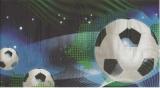 Fußball - Soccer