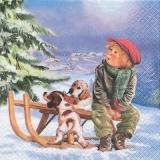 Junge mit 2 Welpen, Hunden - Boy and 2 puppies, dogs - Garçon et 2 chiots,  chiens