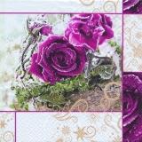 Eisrose - Iced Rose - Rose glacé