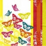 Bunte Schmetterlinge - Colourful butterflies