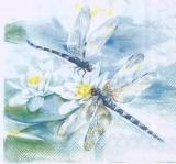 Libellen auf Seerose - Dragonflies on water lily - Libellules & nénuphar