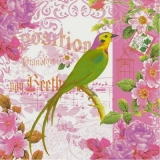 COLLAGE mit Vogel, Rosen & Musik / with bordes, roses & music / doiseaux, de roses & de musique