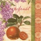 Flieder &  Grapefruit - Lilac - Pamplemousse &  lilas