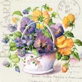 Stiefmütterchen, Veilchen - Pansies, violets - Pensées, violettes