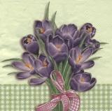 Krokusstrauß grün- Crocus bouquet