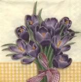 Krokusstrauß gelb - Crocus bouquet