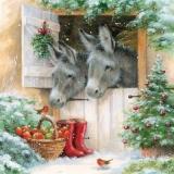 Esel & Rotkehlchen an Santas Stall - Donkeys & robins at Santas barn - ânes & Robins sur la grange du Père Noël