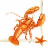 Hummer - Lobster  - Homard