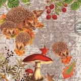 Igelfamilie - Hedgehog family - Famille de hérisson