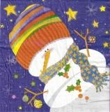 Bunter Schneemann - Colorful Snowman - Bonhomme de neige multicolore