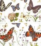 Wunderschöne Schmetterlinge & Frühlingsblumen - Beautiful butterflies & flowers - Beaux papillons et fleurs