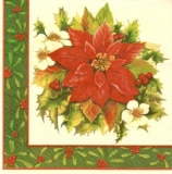Christrosen & Weihnachtsstern - Christmas roses and poinsettia - Roses de Noël et poinsettia