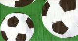 4 Fußbälle - 4 footballs - 4 Fußbälle
