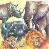 Afrika - Elefant, Löwe, Büffel, Leopard & Nashorn - Africa - elephant, lion, buffalo, leopard & rhino - The Big Five - Afrique - éléphant, lion, buffle, léopard & rhinocéros