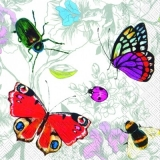 Käfer, Schmetterlinge, Biene & Marienkäfer - Beetle, Butterflies, Bee & Ladybug - Scarabé, papillons, abeilles & coccinelle