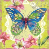 Lilien & prachtvoller Schmetterling - Lily & magnificent butterfly - Lily & magnifique papillon