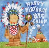 Indianer - Häuptling - Native Indians - Big Chief - Indiens - chef