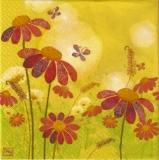 Blumenwiese & Schmetterlinge - Flower meadow & butterflies - Prairie de fleurs et papillons