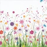 Blumenwiese & Schmetterlinge - Field of flowers & butterflies - Champ de fleurs et de papillons