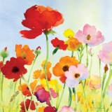 Blumenfeld - Flower field - Champ de fleurs