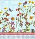 Schmetterlinge & zarte Blüten - Butterflies & delicate flowers - Papillons et fleurs délicates