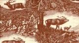 Hirsche im Wald - Deers in the Wood - Chevreuils au bois
