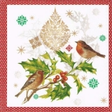 Vögel auf Ilexzweig, Rotkehlchen - Birds on holly branch, Robin - Oiseaux sur branche de houx, Robin