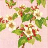 Apfelblüte pink - Apple blossom pink - Fleurs de pomme rosé