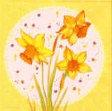 Wunderschöne Narzissen auf Blümchendecke gelb - Beautiful daffodils on flower ceiling - Belles jonquilles sur le plafond