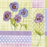 Wunderschöne Veilchen - Beautiful violets - Belles violettes