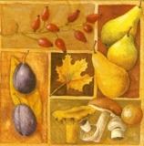 Leckere Gaben des Herbstes - Delicious gifts of autumn - Cadeaux délicieux de lautomne