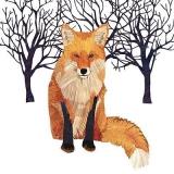 Fuchs im Winter & Bäume - Fox in winter & Trees - Fox en hiver & des arbres