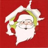 Lustiger Weihnachtsmann - Funny Santa - Père noël drôle