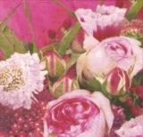 Blumenpracht in pink - Flowers in pink - Fleurs en rose