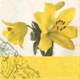 Wunderschöne Lilien in gelb - Beautiful lilies in yellow - Beaux lis en jaune