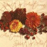 Blumen & Beeren des Herbstes - Flowers and berries of autumn, Spirit of autumn, September - Fleurs et fruits de lautomne