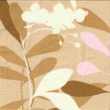Blüten & Blätter - Flowers & leaves - Fleurs & feuilles