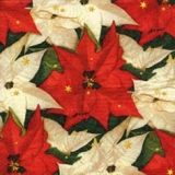 Christrosen mit Sternen - Poinsetta with stars - Roses de Noël avec des étoiles