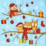 Lustige Eulen & Geschenke auf Baum - Funny Owls & Gifts on tree - Drôle Hiboux & cadeaux sur arbre
