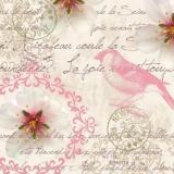 Brief von Frankreich nach New York, Vogel - Letter from France to New York, Bird - Lettre de la France à New York, oiseau
